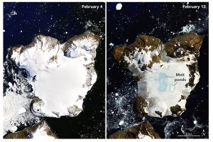 ice melt in antartica