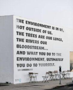 Environment saga
