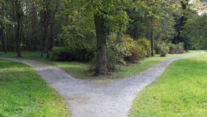 Fork, junction, pathways in a park